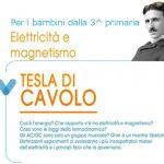 Tesla di cavolo